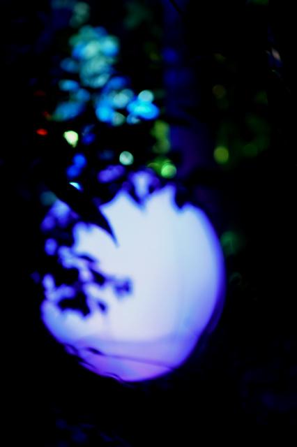 下鴨神社 光の祭典
